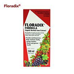 Floradix铁元 补铁补血液 500ml