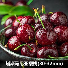 澳洲 塔斯马尼亚车厘子 樱桃 (30-32mm)  塔州原装箱2kg