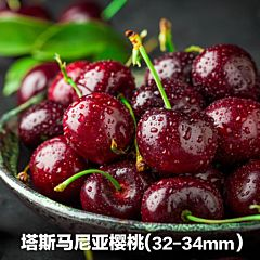 澳洲 塔斯马尼亚车厘子 樱桃 (32-34mm)  塔州原装箱2kg
