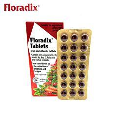 Floradix德国铁元 有机铁 维生素片 84片